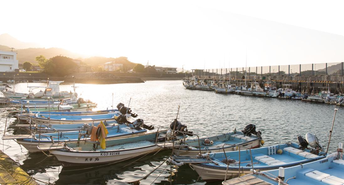 甑島の漁港